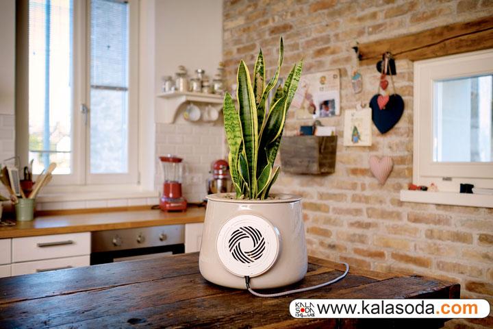 گلدان هوشمند تهویه هوا|کالاسودا