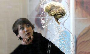 ایمپلنت-مغزی-دانشکاه-استنفورد-مچ-بزهکران-را-می-گیرد