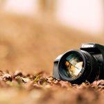 این دو نرم افزار تمام نیاز های علاقه مندان عکاسی را برطرف می کند