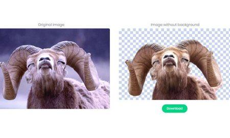 چطور بک گراند عکس را با کمک هوش مصنوعی برداریم؟