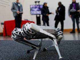 روبات مینی چیتا می تواند مانند یک سگ پشتک بزند!