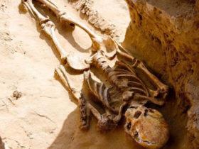کشف اسکلت 2500 ساله منصوب به شاهزاده ایرانی است؟