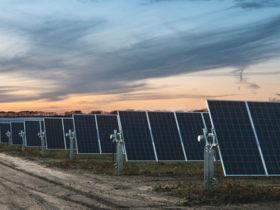 بزرگترین پروژه انرژی خورشیدی شخصی در ابوظبی کلید خورد