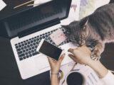 آیا در دور کاری، بهره ور بودن سخت است؟