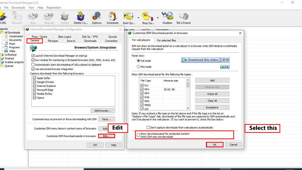 در پنجره باز شده؛ تیک گزینه Show download panel for protected content which IDM may not download را فعال کرده و در نهایت OK را فشار دهید.