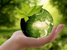 با بهترین محصولات سازگار با محیط زیست در سال 2019 سبزتر شوید